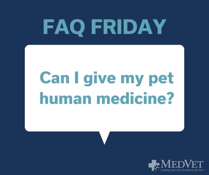 Can I give my pet human medicine_