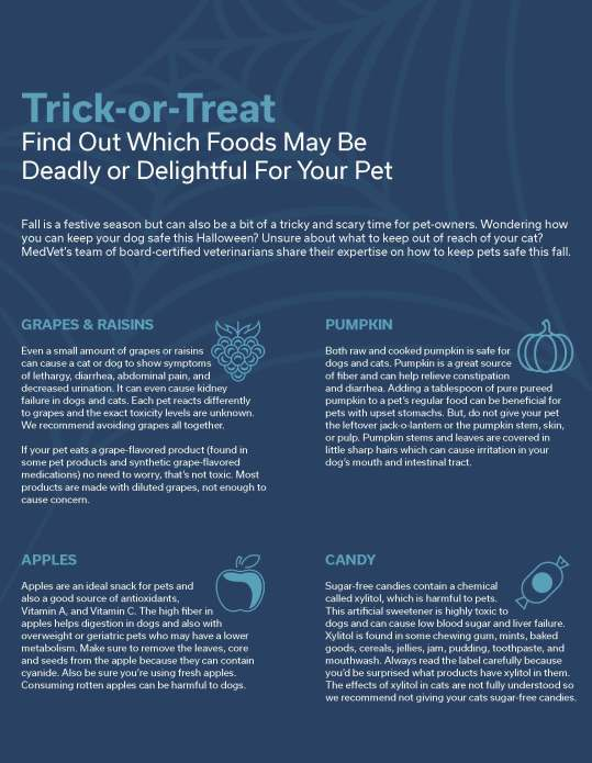 Col_HalloweenSafetyFlyer_MKTG_8.5x11_191018_F Folder_Page_1
