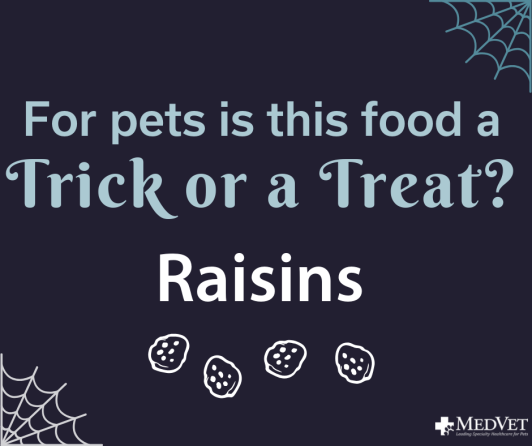 Trick or Treat Raisins