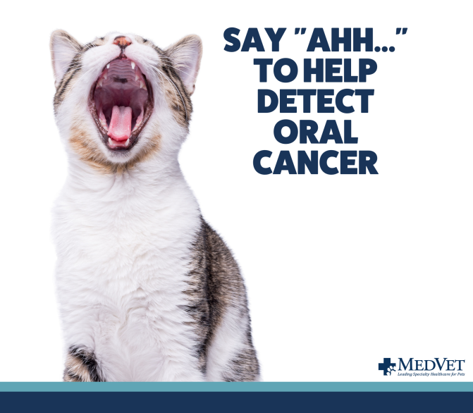detect oral cancer_with logo