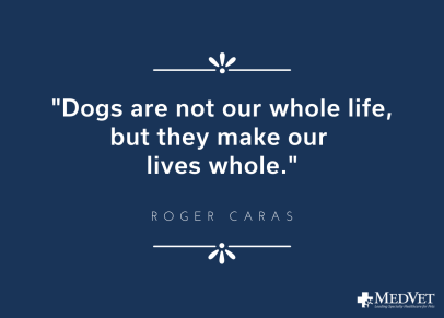 Dogs are not our whole life, but they make our lives whole. quote