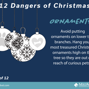 12 Dangers of Christmas 2