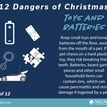 12 Dangers of Christmas 9_2.0
